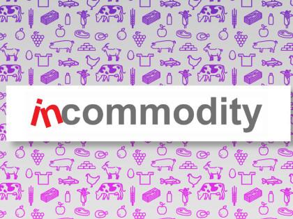 Incommodity 2015